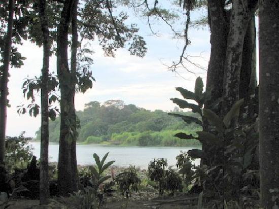 Hostel del Rio: River View