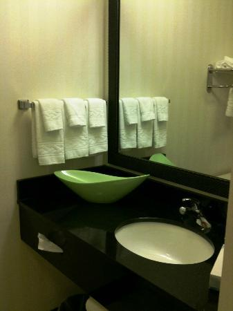 Fairfield Inn & Suites Miami Airport South: Bathroom