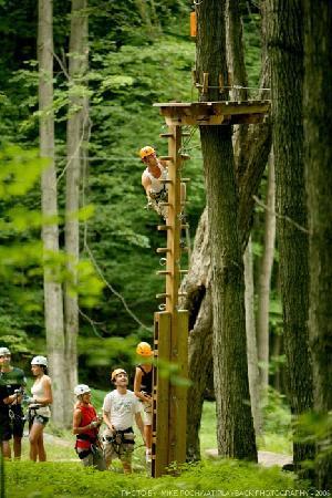 Barrie, Canada: Green Ladder