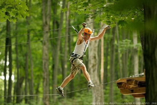 Barrie, Canada: Monkey Wire