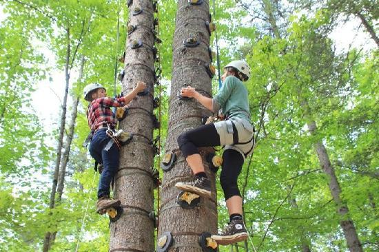 treetop trekking barrie 2018 all you need to know. Black Bedroom Furniture Sets. Home Design Ideas