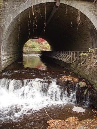 Corbett's Glen Nature Park: Railroad underpass