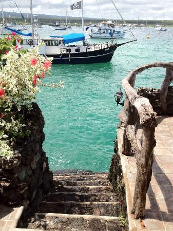 Casa La Iguana: Swim in your doorstep