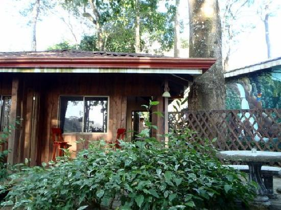 Hostel del Rio: Kitchen/Lounge
