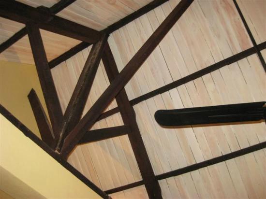 Hotel Villa Deux Rivieres: Ceiling