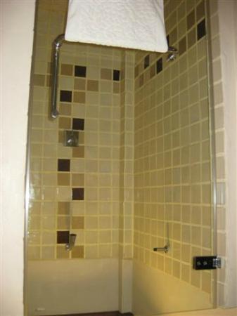 Hotel Villa Deux Rivieres: Shower
