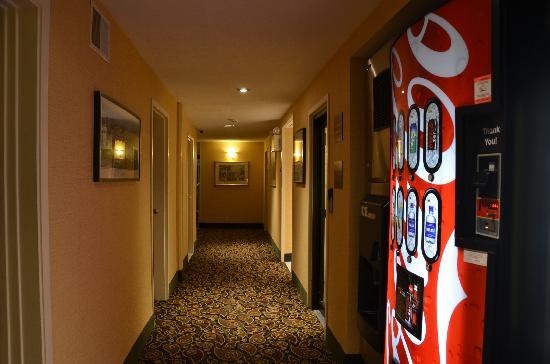 BEST WESTERN Rockland: Hallway
