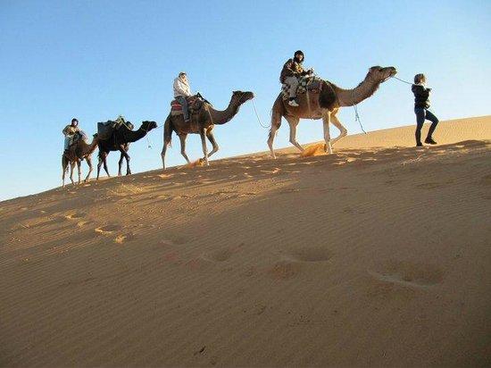 Merzouga 4x4: Camel ride in Morocco