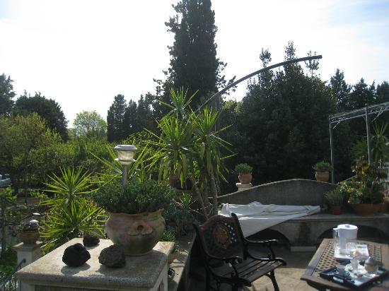 B&B La Tenuta : vista del giardino
