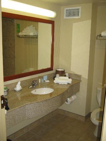 Hampton Inn & Suites by Hilton Windsor: Bathroom