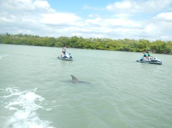 Marco Island Private Boat Tours