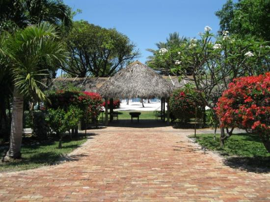 entrance to Morada Bay Beach Cafe from parking - Picture of