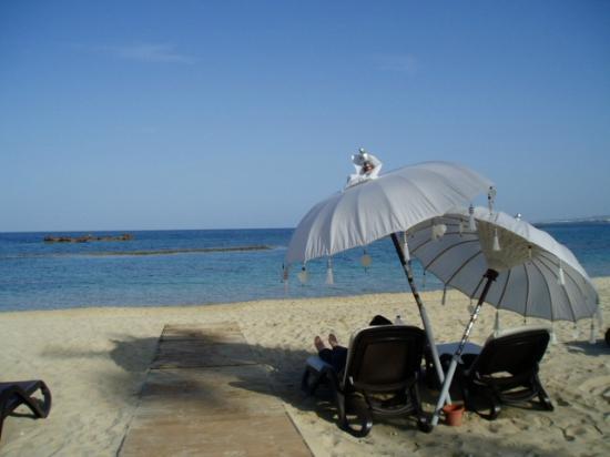 Arkin Palm Beach Hotel : lovely sun umbrella on hotel private beach