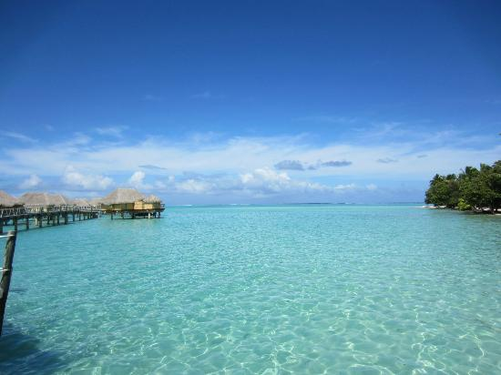 Le Taha'a Island Resort & Spa: Our walk to breakfast