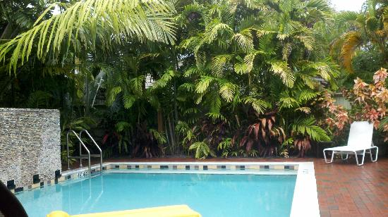 Travelers Palm Inn: Pool
