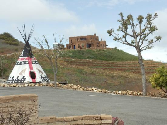 Wild Coyote Winery: The tepee w/bed & breakfast