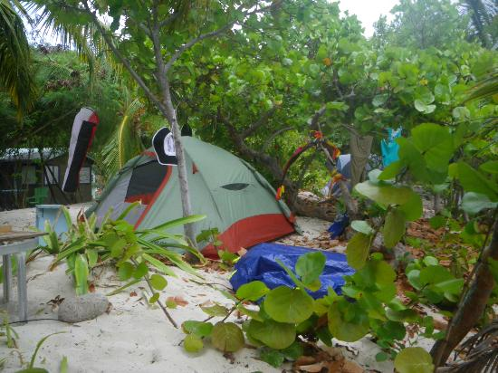 Ivan's Stress Free Guest House & Campground: Our tent
