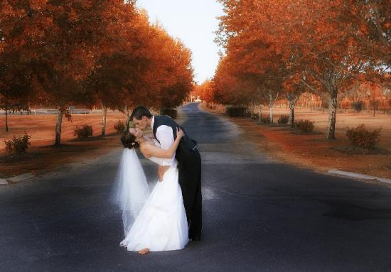 Trentham Estate is the ultimate wedding location