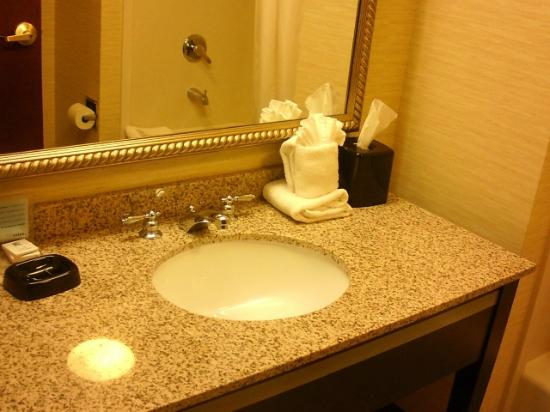 Hampton Inn Wilmington Medical Park: Bathroom counter 4th floor room