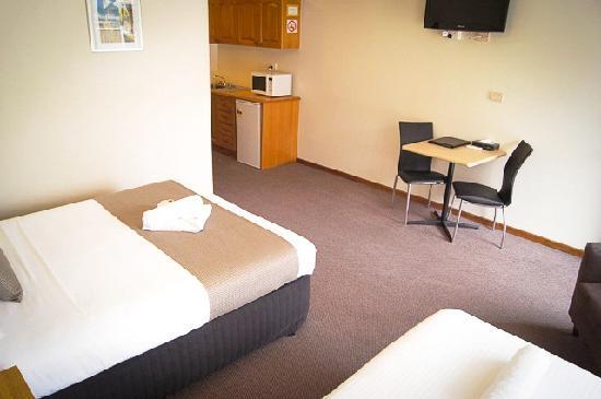 Monte Villa Motor Inn: Deluxe Twin Room