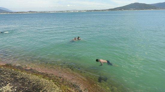 Campeche island: un paraiso