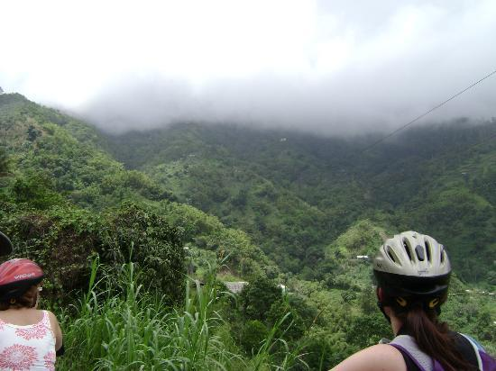 Blue Mountain Bicycle Tour : High up in the mountains