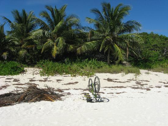 Navío Beach: Navío... I mountain-biked here from The W... ;)