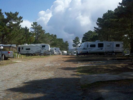 Pelican Point RV Park: RV Park