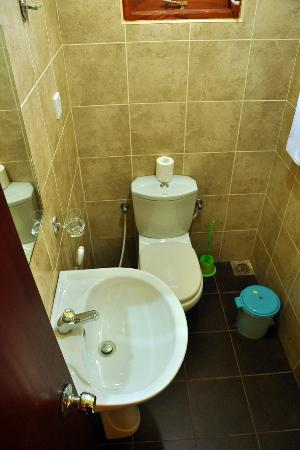 Green View Hotel Katunayake: bathroom