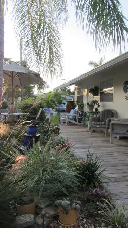 Mango Street Inn: Abendstimmung im Patio