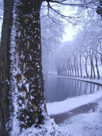 The Belvedere: Canal du Midi with snow (very rare)