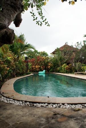 Villa Prana Bali: Loved the pool!