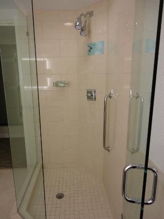 Westin Tampa Bay: Shower