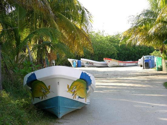Fisherman Fishing Lodge: boats to go