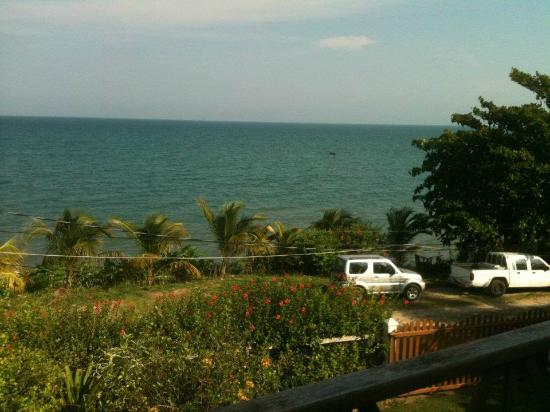 BlueBelize: View from the veranda.