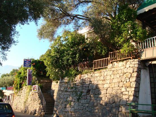 Vila Drago: Вход в отель и ресторан