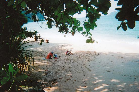 Phra Nang Beach: Ao Nang Beach Locals collecting shells