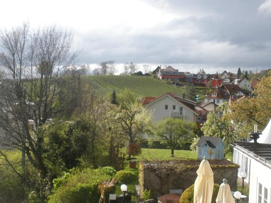 Hotel Villa Seeschau am Bodensee: A view from our balcony.