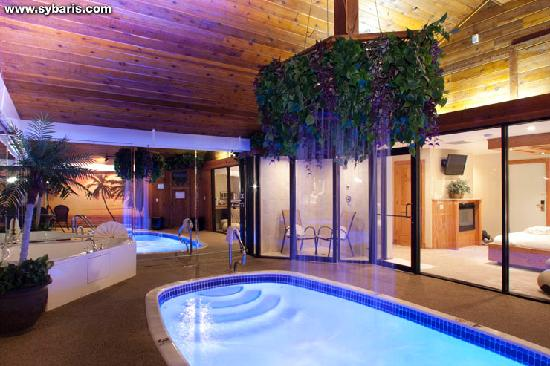 Downers Grove, IL: PARADISE SWIMMING POOL SUITE