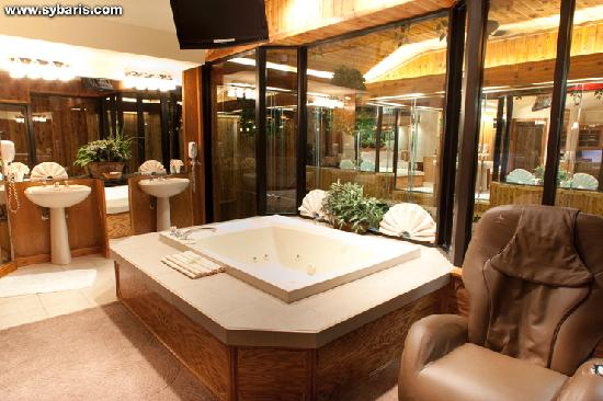 Sybaris Downers Grove: MAJESTIC SWIMMING POOL SUITE
