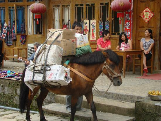 JinTian Guest House: so special to live or visit where there are NO motor vehicles