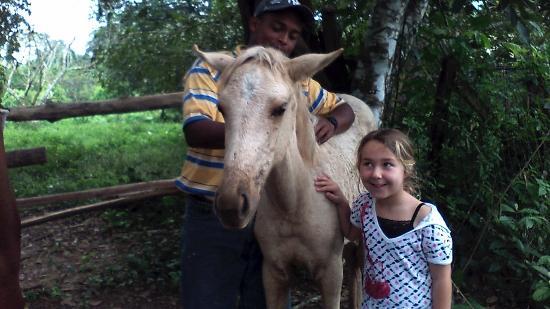 Banana Bank Lodge & Jungle Horseback Adventure: The Yearling my daughter named Sprinkles