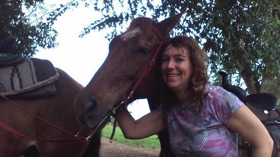 Banana Bank Lodge & Jungle Horseback Adventure: My horse Turbo