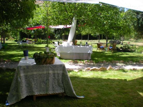 El Molino del Rio: Preparacion de la boda de Nuria y Patricio