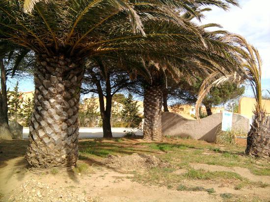 Relax' Otel Le Barcares: Les jardins en friche