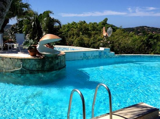 Tropico de Capricornio: vue de la piscine