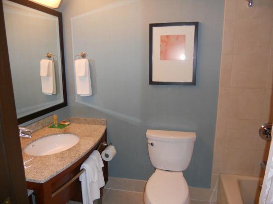 Hyatt Place Milwaukee Airport: bathroom