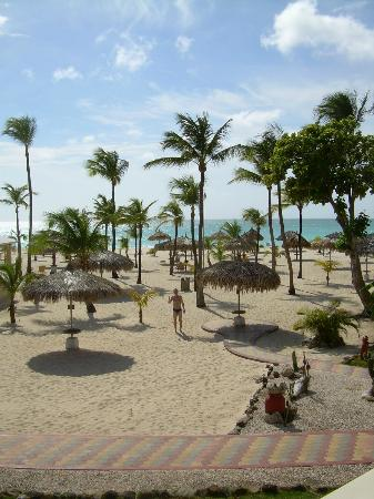 Eagle Beach: White sand, blue sea, palm trees ...