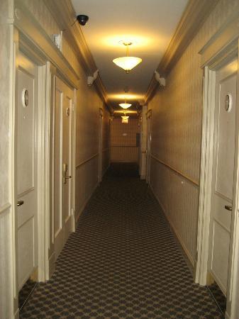City Suites Hotel: Pasillo