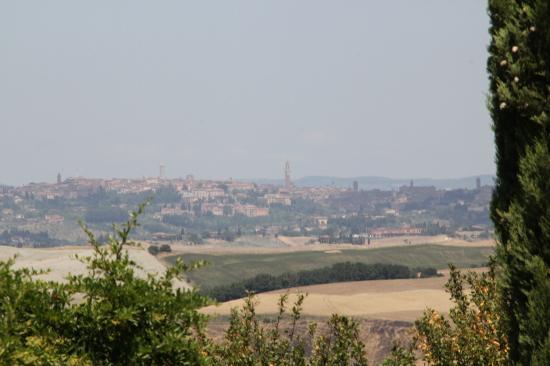 Villa Corsanello: Views from the Villa